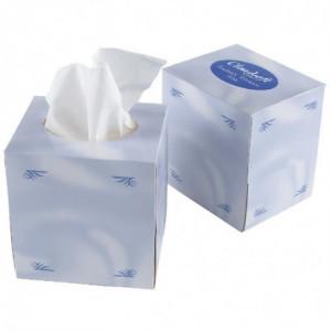 Cube De Mouchoirs En Papier 2 Plis - Lot De 24 FourniResto - 1