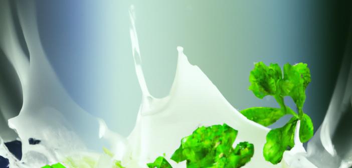 La cuisine durable